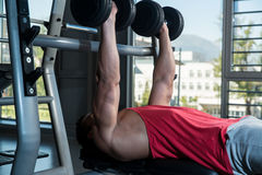 Men Working Out With Dumbbells Royalty Free Stock Photo