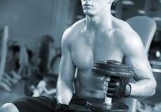 Men working out in a gym Stock Photography