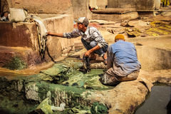 Men working at a tannery. Marrakesh. Morocco Stock Photos