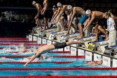 Men 4x200 Freestyle Royalty Free Stock Photography