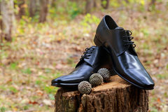 Men& x27;s black leather dress shoes Stock Photos