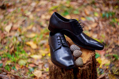 Men& x27;s black leather dress shoes Royalty Free Stock Photo