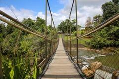 Mena Creek upphängningbro Arkivbilder