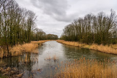 Menacing clouds above a creek in a autumnal nature reserve Stock Photography
