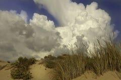 Menacing clouds over the pure sandunes at Sampieri beach in Sicily in a summer windy day. Menacing clouds over the pure sandunes and scattered bushes at Sampieri stock image