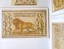 The menacing lion Stock Photos