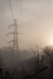 Menacing power line tower in nature. Intrusive power line tower in a forest. The sun is rising Stock Photo