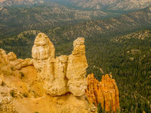 Menagrami di Bryce Canyon Fotografia Stock