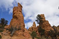 Menagramo rosso del canyon Fotografia Stock Libera da Diritti