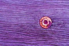 Menchia dokrętka jest zrudziała na starej drewnianej podłoga Obrazy Stock