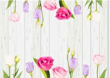 Menchia i biel rozbudzamy wektorowych kwiaty na białego drewnianego tła mieszkania nieatutowej scenie ilustracji
