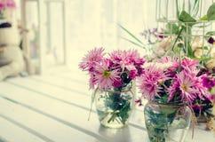 Menchia i purpura kwitniemy blisko okno Zdjęcie Stock