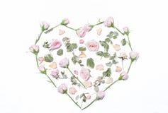 Menchia kwiaty, zieleń opuszczają w formie serca na białych półdupki Obrazy Royalty Free