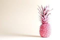 Menchia malujący ananas na białym tle obraz stock