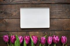 Menchia, tulipan wiązka na ciemnym stajni drewnie zaszaluje tło Obraz Royalty Free