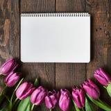 Menchia, tulipan wiązka na ciemnym stajni drewnie zaszaluje tło Zdjęcie Royalty Free