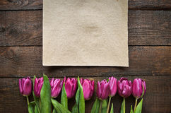Menchia, tulipan wiązka na ciemnym stajni drewnie zaszaluje tło Zdjęcia Royalty Free