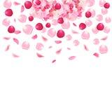 Menchie, czerwoni romantyczni różani płatki i hortensja wektoru karta Zdjęcia Royalty Free