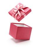 Menchie Otwierają prezenta pudełko Odizolowywającego na bielu Fotografia Stock
