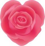 Menchii róża, serce kształtujący ilustracji