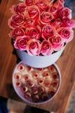 Menchii róża zapina w pudełku nad cukierkami obrazy royalty free