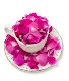Menchii róży płatki w pięknej herbacianej filiżance Zdjęcia Royalty Free