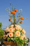 Menchii róża Zdjęcie Stock