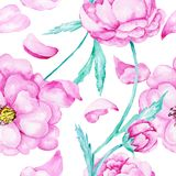 Menchii róży akwareli wzór Obraz Royalty Free