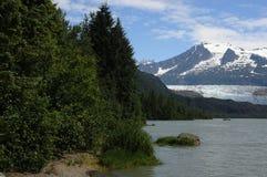 Mendahall glaciär Arkivfoto