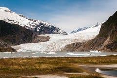 Menden Hall Alaska Glacier sikt från baksidan med gräs Arkivfoto