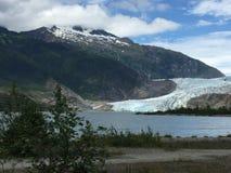 Mendenhall冰川 库存图片