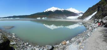 Mendenhall glaciär Arkivbild