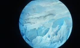 Mendenhall glaciär Royaltyfria Bilder
