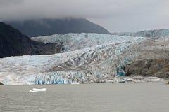 Mendenhall glaciär och dal, Alaska royaltyfria bilder