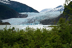 Mendenhall Glacier Stock Photos