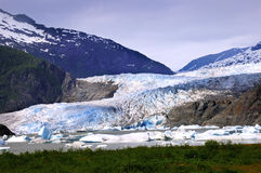 Mendenhall Glacier Royalty Free Stock Photography