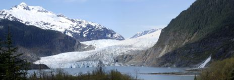 Mendenhall Glacier. Panoramic view of Mendenhall Glacier that melts down so rapidly, five years ago the ice were reaching the waterfall (Juneau, Alaska Stock Photo