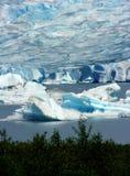 Mendenhall Glacier, Alaska Royalty Free Stock Images