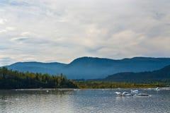 Mendenhall Glacier Bay Mist Royalty Free Stock Photo