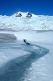 The Mendenhall Glacier Royalty Free Stock Photography