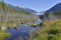 Mendenhall Glacier near Juneau, Alaska Royalty Free Stock Image