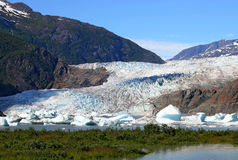 Mendenhall glacier in summer Stock Photography