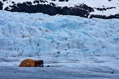 Mendenhall Glaciers Stock Photography