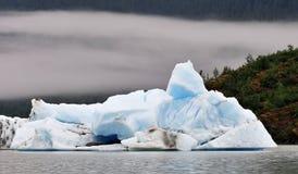 Mendenhall Iceberg Stock Images