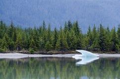 mendenhall juneau ледника Аляски Стоковое фото RF