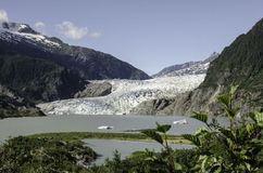 Mendenhall lodowiec Fotografia Stock