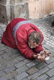 Mendigo en la ciudad vieja, Praga, República Checa Imágenes de archivo libres de regalías