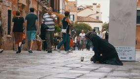 Mendigo sin hogar Grandmother Asks para las limosnas en las calles de Venecia, Italia almacen de metraje de vídeo