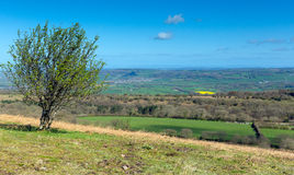 Mendip Hill view from Black Down highest point Somerset Stock Image