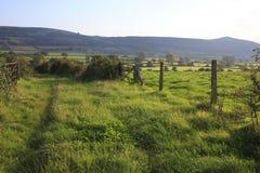 Mendip hills in Somerset,UK Royalty Free Stock Photos
